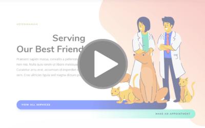 Diseño de página web y Creación de marca para Veterinarios