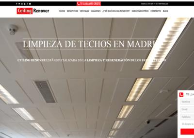 Creación Página Web | Diseño web Landing Personalizada Ceiling Renover