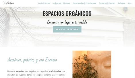 Diseno pagina web madrid Cris Longoria